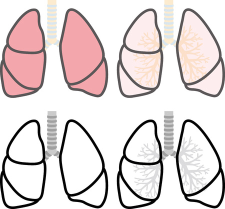 cancer de pulmon: Pulm�n Vectores