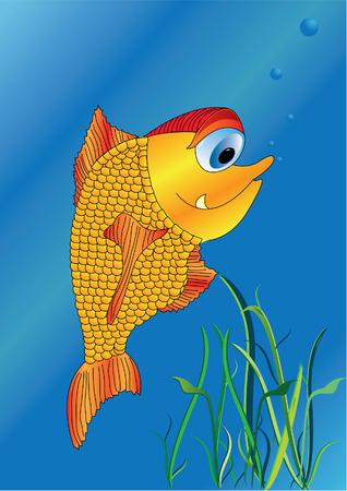 gold fish bowl: vector gold fish