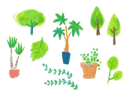 Various shapes of plant sets