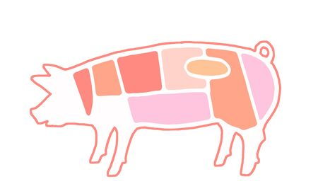 Explanatory view of the meat part of a pig Reklamní fotografie