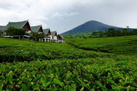 Dempo Mountain South Sumatera Indonesia