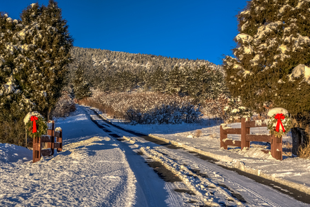 Snowy country road with Christmas wreaths on gate posts