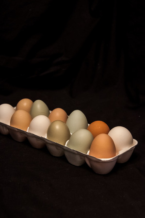 dozen: Dozen farm fresh eggs in a carton