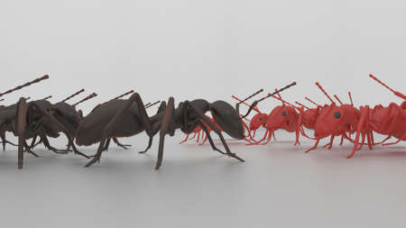 racism: rad and blsck ants about to go to war 3d render