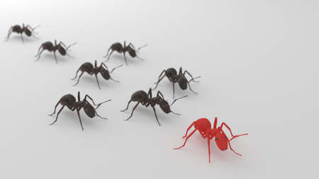 Black ants following red ant 3d render