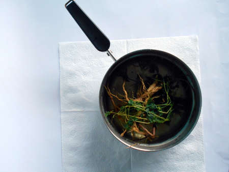 Guinea hen weed herbs in a pot to be boiled. Good for healthy living and for fighting cancer. Stock Photo