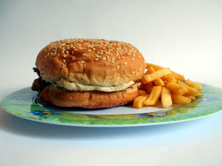 sandwhich on plate with fries