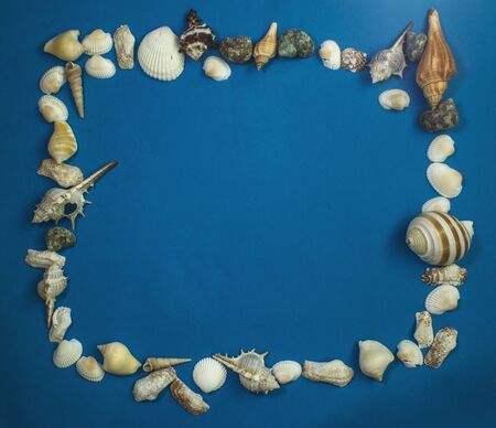 seashell frame on a blue background, with free space for your text.