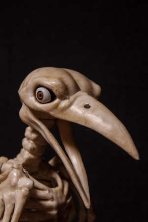 skeleton of a raven with human eyes on a black background
