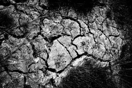 Landscape cracked soil, Cracked dry brown soil background, Global worming concept