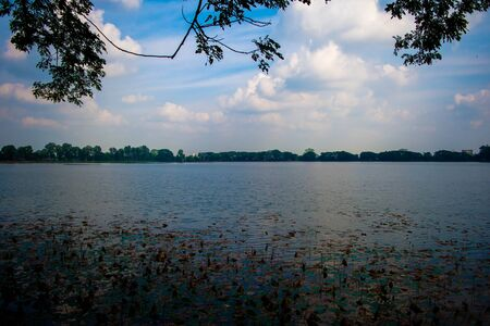 Sibsagar Lake, Admire the Lovely Architecture in Sibsagar. lotus leaf