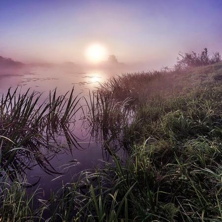 bayou: sunrise over the Bayou clean