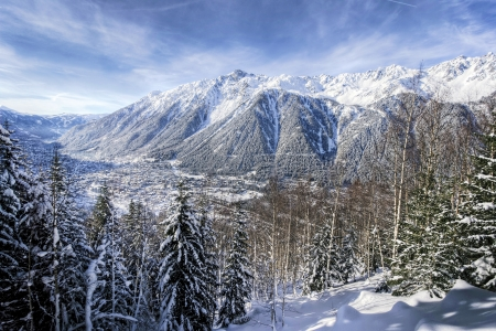 French Alps behind trees photo