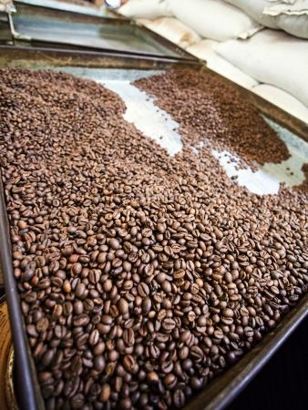 capucinno: Coffee Beans