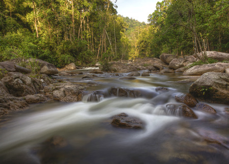 Malaysias natural tropical forest and rapid water river 版權商用圖片