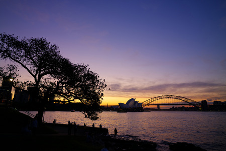 sydney opera house: Silhouette of Sydney Opera House and Harbour Bridge during sunset
