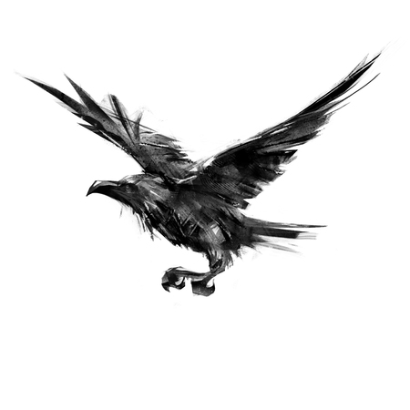 drawing black crow flying on a white background