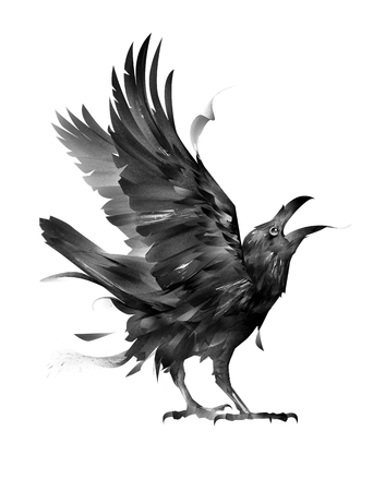 isolated sketch of a seated bird cawing crow 版權商用圖片