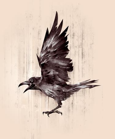 sketch silhouette flying bird crow on the side Zdjęcie Seryjne