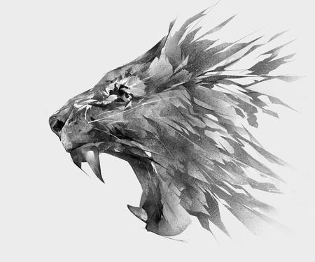 モノクロの分離様式ライオン顔側面の図面 写真素材