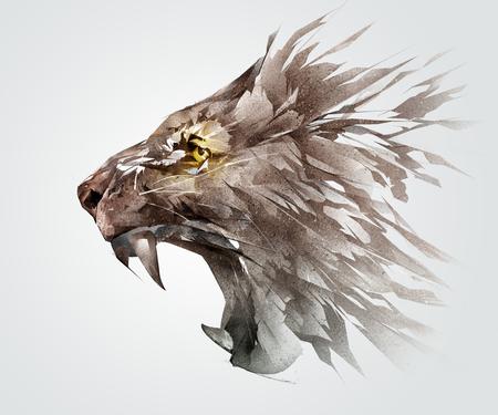 Geïsoleerde gekleurde schets grijnzende snuit van een leeuw de dierlijke kant Stockfoto