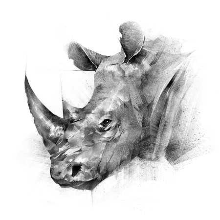 face painted rhinoceros animal on white background Фото со стока