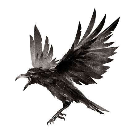 getrokken vliegende vogel op witte achtergrond Stockfoto