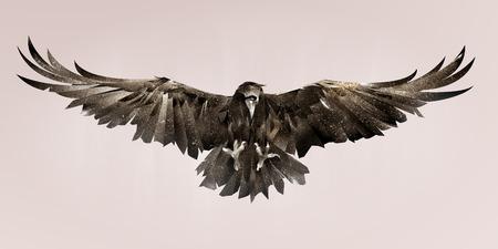 Geschilderde vogelraaf op de voorkant. Kleur schets vogel