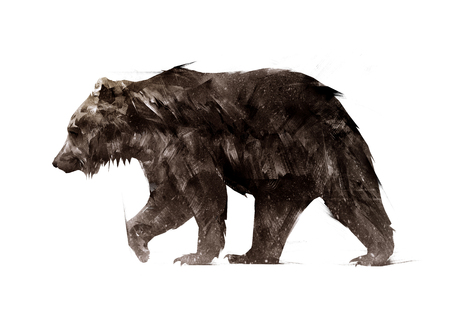 color painted a walking animal bear side Stock Photo