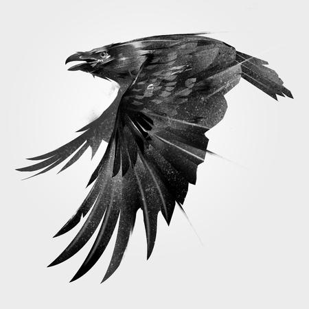 예술 측면에서 조류 까마귀를 비행