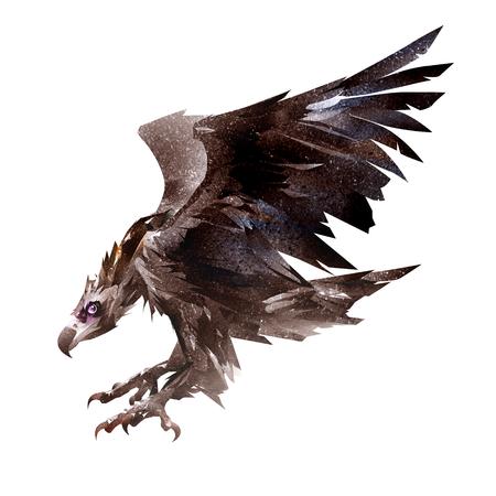 art flying bird, the vulture, the scavenger side