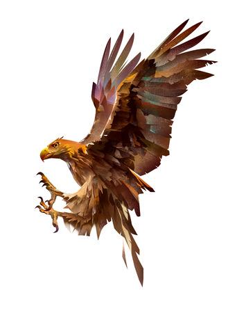 schets aanvallende schets vogel adelaar op witte achtergrond