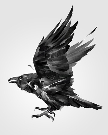 painted isolated flying bird raven on the side