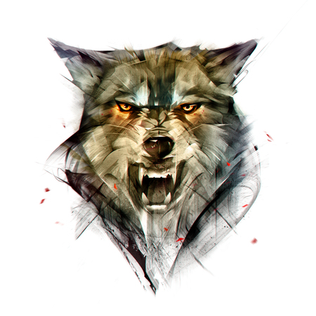 drawn isolated color portrait of a wolf animal