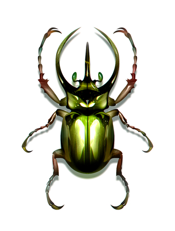 drawn green insect on white background Stock Photo