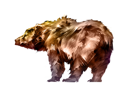 painted colored bear animal on a white background