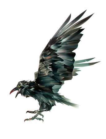 painted colored bird of crows on white background