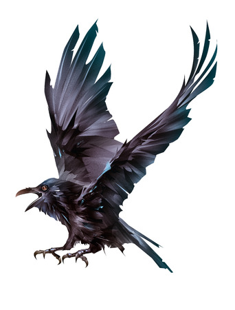 flying colored bird sketch Raven on a white background