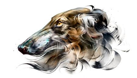 painted portrait of dog Borzoi on white background Фото со стока