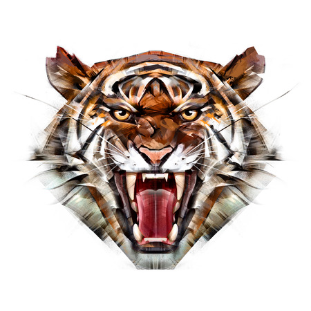 painted color portrait of a tiger muzzle on a white background