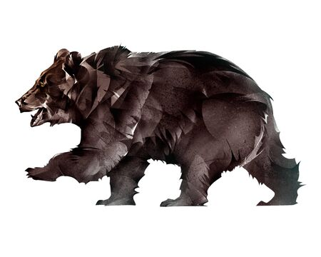 drawn animal bear on a white background
