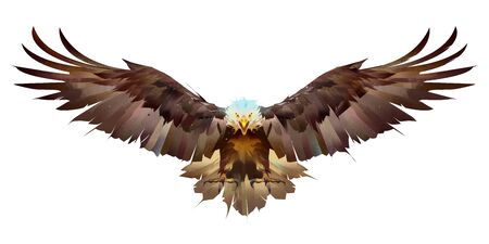painted bright eagle on a white background flaps its wings