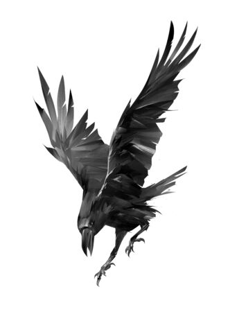 painted raven attacking bird on a white background