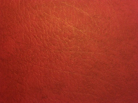 Dark red skin texture with a golden pattern Stock Photo - 8799329