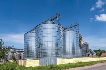 silver silos on agro-processing and manufacturing plant for processing drying cleaning and storage of agricultural products, flour, cereals and grain. Granary elevator. Stock Photo