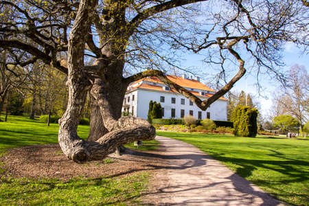 View of Traskanda Manor (Aurora Park) in spring, big tree and main building on the background, Espoo, Finland Stock Photo