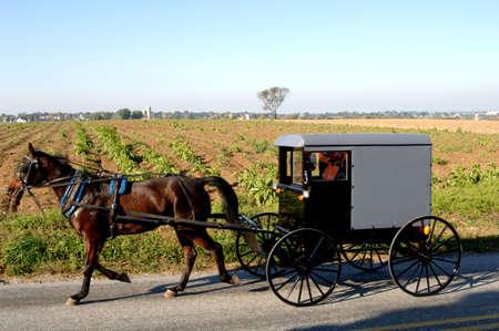 Horse drawm buggy