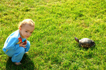 Toddler with turtle in grass