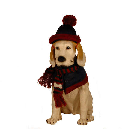 Dog statue dressed up for winter with wool hat and scarf Stock Photo