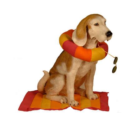 flotation: Dog statue ready for the beach Stock Photo